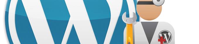 wordpress-support-5630118